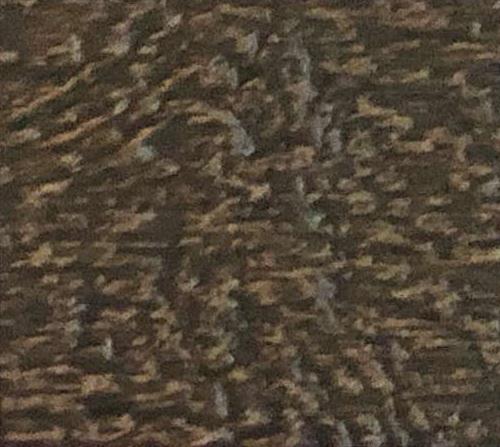 Sierra Lap Siding Color